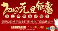 上海英博口腔2019元旦瑞士ITI种植体价格钜惠 附案例及专家