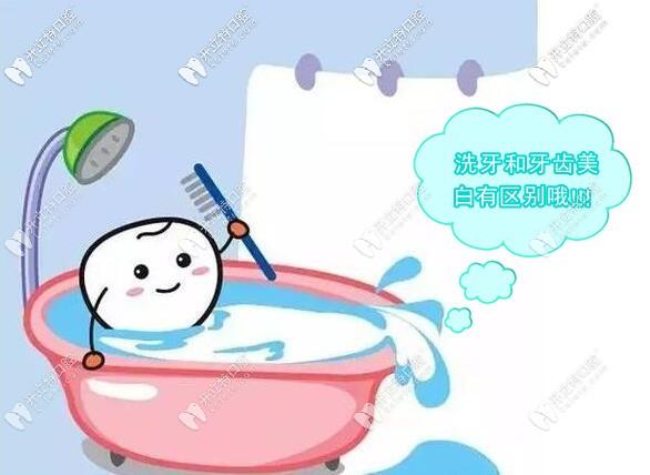别再搞错啦!洗牙和牙齿美白的区别可不是一点点