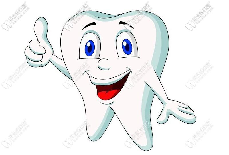 牙齿美观动画图