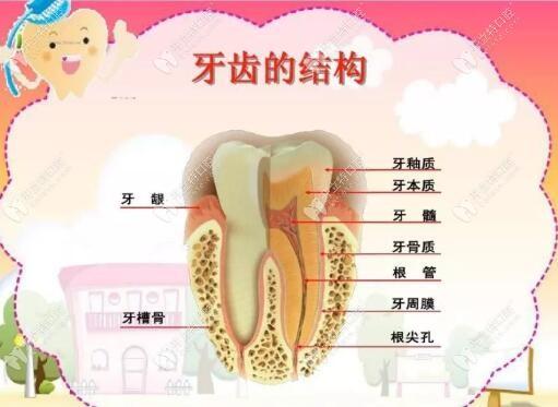 牙髓炎会自愈吗?别傻了必须要做根管治疗否则后果你想不到
